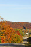 秋天上色在乡下公路下 免版税库存照片