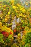 秋天上色峡谷naruko 免版税库存照片
