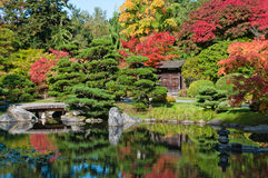 秋天上色庭院日语 免版税库存照片