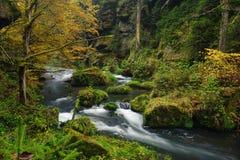 秋天上色河 库存图片