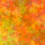 秋天上色背景 免版税图库摄影