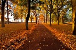 秋天上色jurmala拉脱维亚 库存照片
