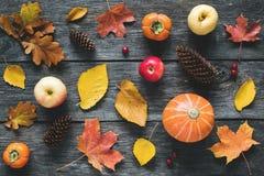 秋天下落的叶子、南瓜、苹果和锥体仿造舱内甲板位置 免版税库存照片