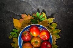 秋天下落的黄色叶子和成熟红色苹果黑暗的背景或框架  文本或照片的框架 可适用为  免版税库存照片