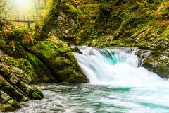 秋天与小绿松石瀑布的森林颜色在Vintgar自然公园  免版税库存图片