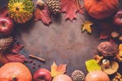 秋天与拷贝空间的食物边界文本的 免版税库存照片