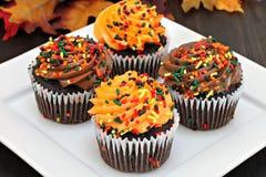 秋天与桔子和巧克力结霜的巧克力杯形蛋糕和 免版税库存照片