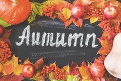 秋天与槭树叶子、苹果和南瓜的题材背景 收获 库存图片