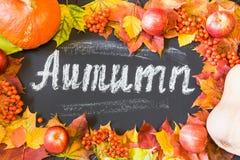 秋天与槭树叶子、苹果和南瓜的题材背景 库存图片