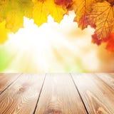 秋天与槭树的自然背景离开,木桌 库存照片