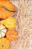 秋天与秸杆的金瓜静物画 免版税图库摄影