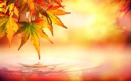 秋天与红色叶子的温泉背景 免版税图库摄影