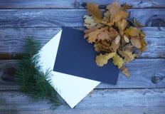 秋天与纸板料的叶子构成 库存图片