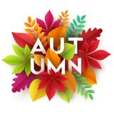 秋天与纸秋天叶子的横幅背景 也corel凹道例证向量 库存照片