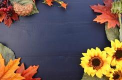 秋天与装饰的边界的秋天背景 库存图片