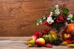 秋天与雪果,绿色南瓜,拷贝空间的桌焦点 库存照片