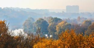 秋天与音调的透视的早晨风景 免版税库存图片