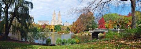 秋天中心城市新的全景公园约克 免版税图库摄影