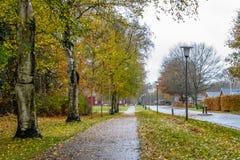 秋天丹麦路在11月在维堡,丹麦 免版税库存图片
