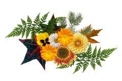 秋天主题的花卉元素,隔绝在白色 季节性修剪 免版税库存照片