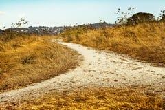 秋天乡下路通过领域用麦子 免版税库存照片