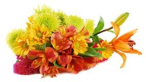 秋天五颜六色的不同的花许多 库存图片