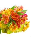 秋天五颜六色的不同的花许多 免版税库存图片