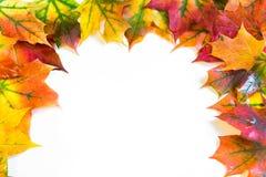 秋天五颜六色的叶子与文本的空间 顶视图 库存图片