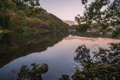 秋天五颜六色的叶子公园 免版税库存照片
