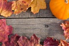 秋天五颜六色的叶子和南瓜在木桌上 免版税库存图片