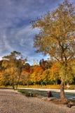秋天五颜六色的夫妇 库存照片