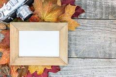 秋天五颜六色的干燥槭树离开与空的照片框架和clas 免版税库存图片
