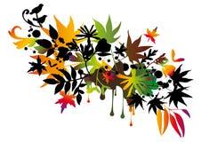 秋天五颜六色的本质 免版税库存图片