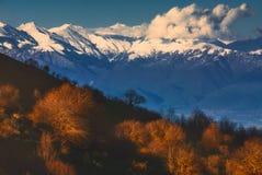 秋天五颜六色的森林横向山 免版税库存照片