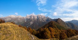 秋天五颜六色的森林横向山 图库摄影