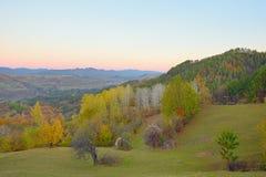 秋天五颜六色的森林横向 库存图片