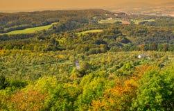 秋天五颜六色的森林视图从上面 库存图片