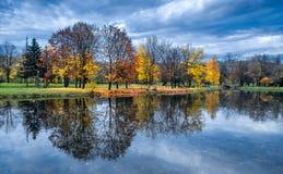 秋天五颜六色的森林离开风景 免版税库存照片