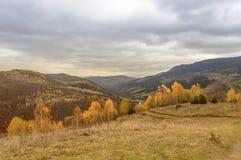 秋天五颜六色的横向山日出 免版税库存照片