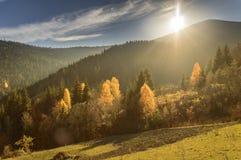 秋天五颜六色的横向山日出 免版税图库摄影