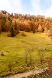秋天五颜六色的横向山日出 免版税库存图片