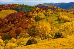 秋天五颜六色的横向 免版税库存图片