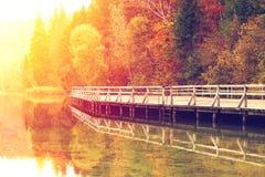 秋天五颜六色的横向 免版税库存照片
