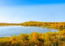 秋天五颜六色的横向 免版税图库摄影