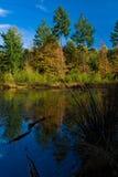 秋天五颜六色的湖横向结构树 图库摄影