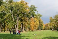 秋天五颜六色的老公园 免版税库存照片