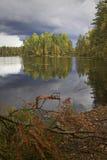 秋天五颜六色的芬兰 免版税库存照片