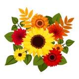 秋天五颜六色的花。 皇族释放例证