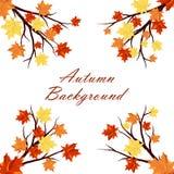 秋天五颜六色的设计叶子花圈 免版税图库摄影
