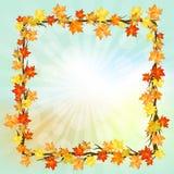 秋天五颜六色的设计叶子花圈 图库摄影
